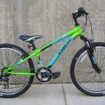 Trek Mt 220 in green