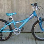 Used Trek MT 60