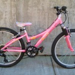 Used Trek Mt 220 pink