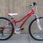 Trek Mt 220 in red