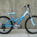 Used Trek Mt 220  $199