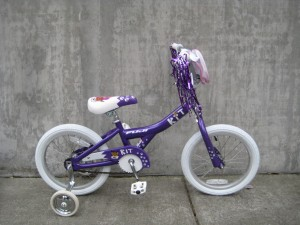 Kit 16 in purple