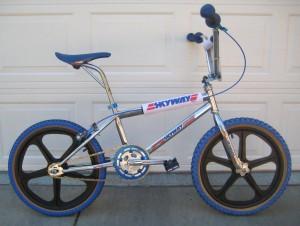 1984 Skyway T/A