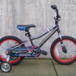 Raleigh MXR 16