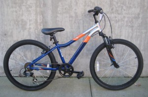 Raleigh Mountain Scout