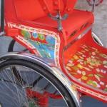 Rickshaw side panel