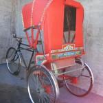 Rickshaw canopy