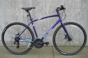 Alysa 2 in purple