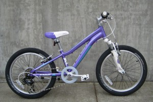Fuji Dynamite 20 in purple