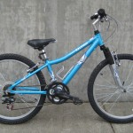 "24"" Raleigh $199"