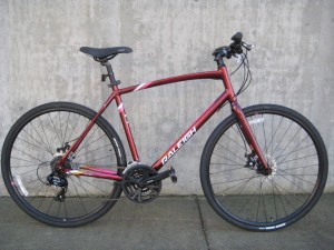 Raleigh Alysa 2