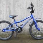Raleigh MXR $139