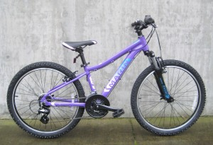Bayview Trail 24 in purple