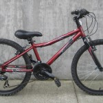 "Raleigh 24"" $189"