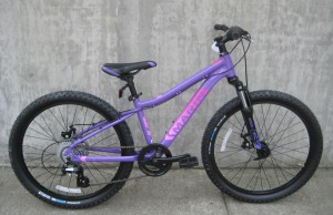 Bayview Trail in purple