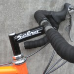 A Ross Schafer-era Salsa stem