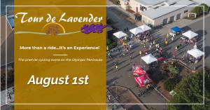 Tour de Lavender