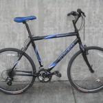 Trek 800 Sport $249