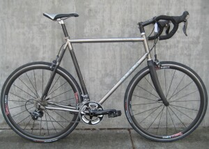 60cm Seven Odonata $2399
